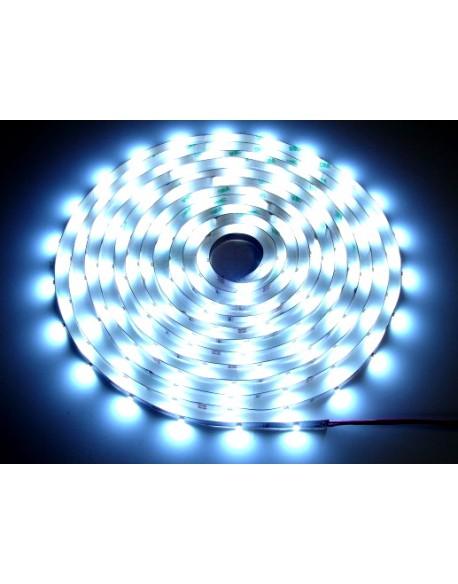 Taśma LED 3528 biała zimny 5m/300diod 24V