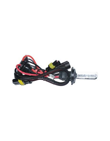 Samochodowy żarnik xenon H1 2szt/kpl 6000K